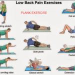 Latihan Plank Untuk Pemula